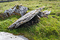 Faunarooska, Rathborney, Wedge Tomb Cl. 4 NE Detail 2015 09 04.jpg