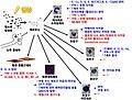 Fcvm-04-00048-g003-ko.jpg