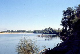 Feather River upstream from Bear River May 1962 (26252160824).jpg