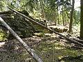 Felsen in der Dehl (Hoch-Weisel) 15.JPG