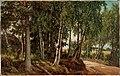 Ferdinand von Wright - Forest Landscape from Haminalahti - A IV 3987 - Finnish National Gallery.jpg