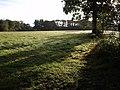 Field near Medland - geograph.org.uk - 576015.jpg