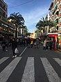 Fiestas de San Blas de Torrente año dos mil veinte 24.jpg