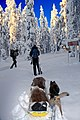 Finland 2012-01-28 (6833850538).jpg