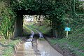 Firgo Lane passing under bridge of dismantled railway - geograph.org.uk - 344212.jpg