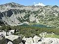 Fish Banderishko lake, Pirin National Park 11.JPG