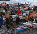 Fishermen's frenzy (1).jpg