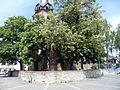 Flörsheim-Ansicht von Nordwesten mit Gerichtslinde-17052012.JPG