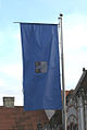 Flag od Čakovec.jpg