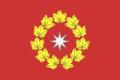 Flag of Oktyabrsky (Volgograd oblast).png