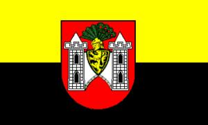 Deutsch: Flagge der Stadt Plauen