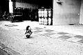 Flickr - Shinrya - Crying Girl.jpg