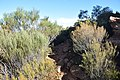 Flinders Ranges SA 5434, Australia - panoramio (33).jpg
