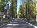 Fokinskiy rayon, Bryansk, Bryanskaya oblast', Russia - panoramio (103).jpg