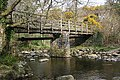 Footbridge over the River Tavy - geograph.org.uk - 157639.jpg