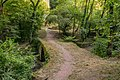Footpath in Peyrusse-le-Roc 03.jpg