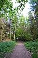 Footpath in the wood on Watlington Hill - geograph.org.uk - 1284785.jpg