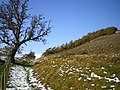 Footpath up to Craig Ysgwennant - geograph.org.uk - 1049778.jpg