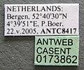 Formica rufa casent0173862 label 1.jpg