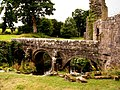 Fountains Abbey - geograph.org.uk - 446027.jpg