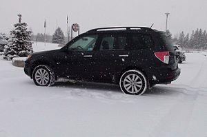 Fresh Snow - Flickr - Stradablog.jpg