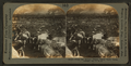 From the Kansas Plains. Union Stock Yards (stockyards), Chicago, Ill., U.S.A, from Robert N. Dennis collection of stereoscopic views.png