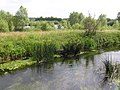 From the old railway line - Stanwick Lakes - June 2009 - panoramio.jpg