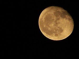 Full Moon (1)