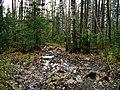 G. Zlatoust, Chelyabinskaya oblast', Russia - panoramio (26).jpg