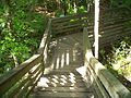 Gainesville FL Devil's Millhopper stairs02.jpg