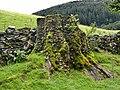 Ganllwyd - panoramio (3).jpg