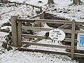 Gate, Kinloch Rannoch - geograph.org.uk - 675621.jpg