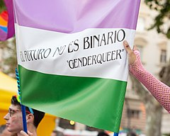 "A genderqueer pride flag held aloft with the words ""El Futuro No Es Binario - Genderqueer"" written across it"