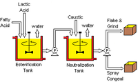 Generalized Lactylate Manufacturing Process.png