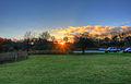 Gfp-wisconsin-madison-sun-setting-behind-trees.jpg