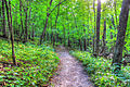 Gfp-wisconsin-wyalusing-state-park-hiking-path.jpg