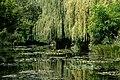 Giverny - Jardin Monet (13).JPG