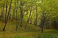 Gmina Liszki, Poland - panoramio (34).jpg