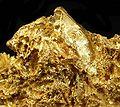 Gold-cat14c.jpg