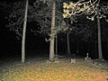 Goodleburg Cemetery at night, South Wales, New York, October 2005.jpg
