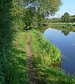 Grand Union Canal and towpath - geograph.org.uk - 553174.jpg