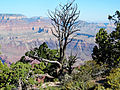 Grand View Point, Grand Canyon 9-15 (21835280178).jpg