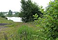 Gravel Pit and Knotweed, near Hilton Park, Staffordshire - geograph.org.uk - 458624.jpg