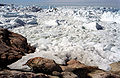 Greenland Ilulissat-19.jpg