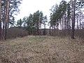 Grigiškės, Lithuania - panoramio (153).jpg