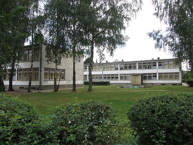 File:Grigiškės, Lithuania - panoramio (48).jpg