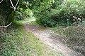 Grove Pit Lane - geograph.org.uk - 854534.jpg