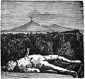 Guida di Pompei illustrata p014.jpg