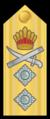 Guyana Rear Admiral Rank Insignia.png