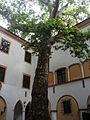 Hédervári-kastély03.JPG